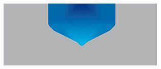 Acoa Srl Logo